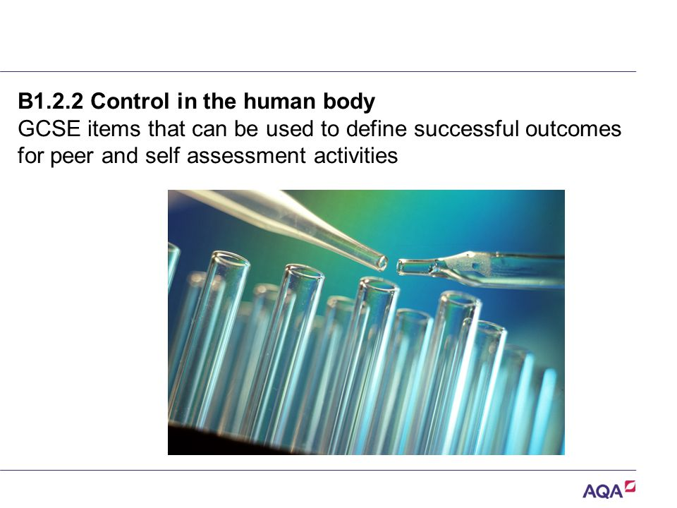 B1.2.2 Control in the human body GCSE items that can be used to define successful outcomes for peer and self assessment activities