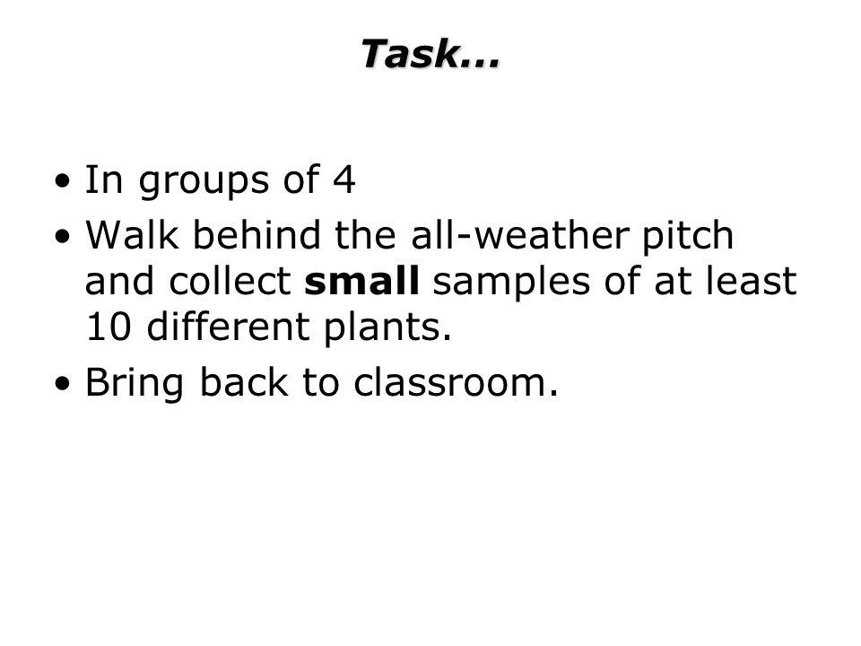 Task...