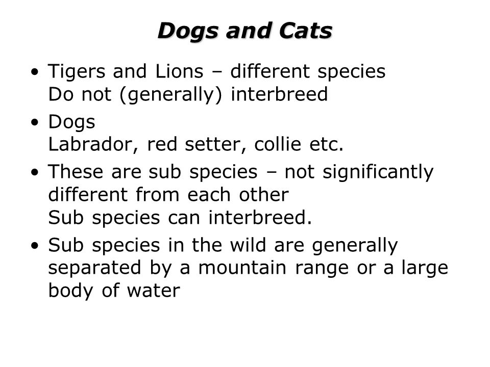 Dogs and Cats Tigers and Lions – different species Do not (generally) interbreed Dogs Labrador, red setter, collie etc.