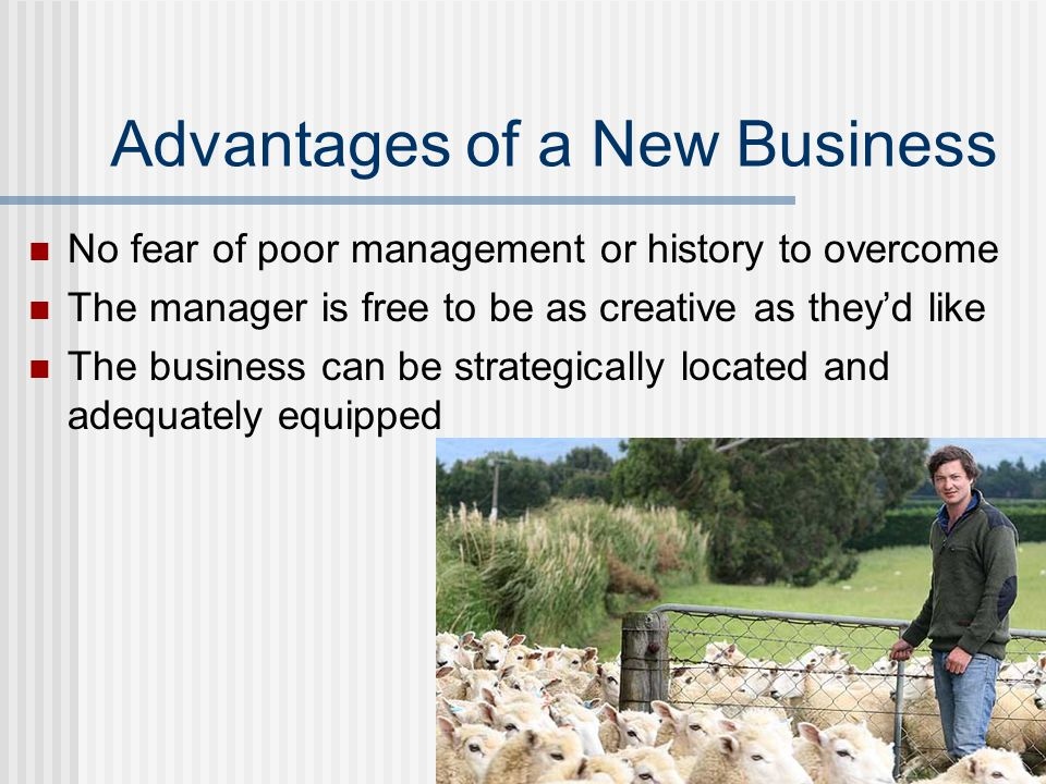 Advantages of a New Business No fear of poor management or history to overcome The manager is free to be as creative as they'd like The business can b