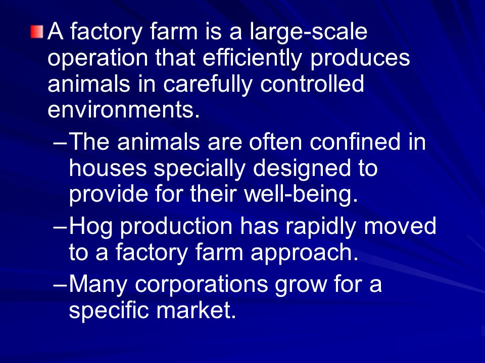 A factory farm is a large-scale operation that efficiently produces animals in carefully controlled environments. – –The animals are often confined in