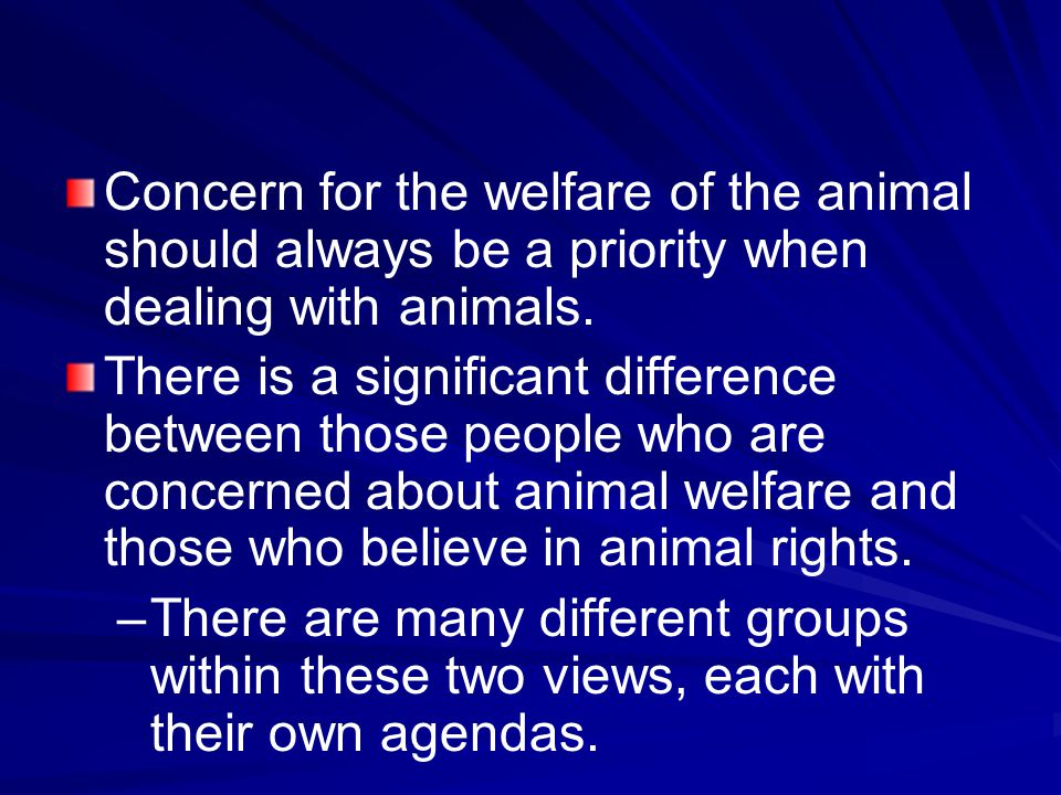 Concern for the welfare of the animal should always be a priority when dealing with animals.