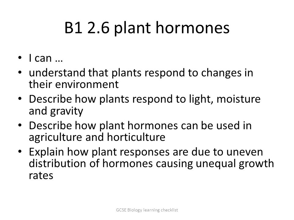 B1 2.6 plant hormones I can … understand that plants respond to changes in their environment Describe how plants respond to light, moisture and gravity Describe how plant hormones can be used in agriculture and horticulture Explain how plant responses are due to uneven distribution of hormones causing unequal growth rates GCSE Biology learning checklist