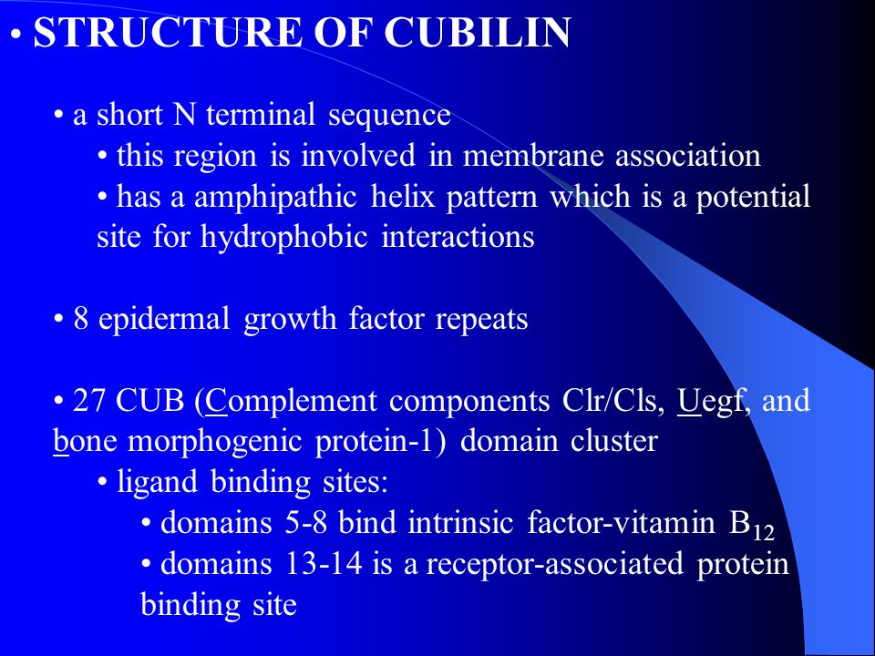 STRUCTURE OF CUBILIN a short N terminal sequence this region is involved in membrane association has a amphipathic helix pattern which is a potential
