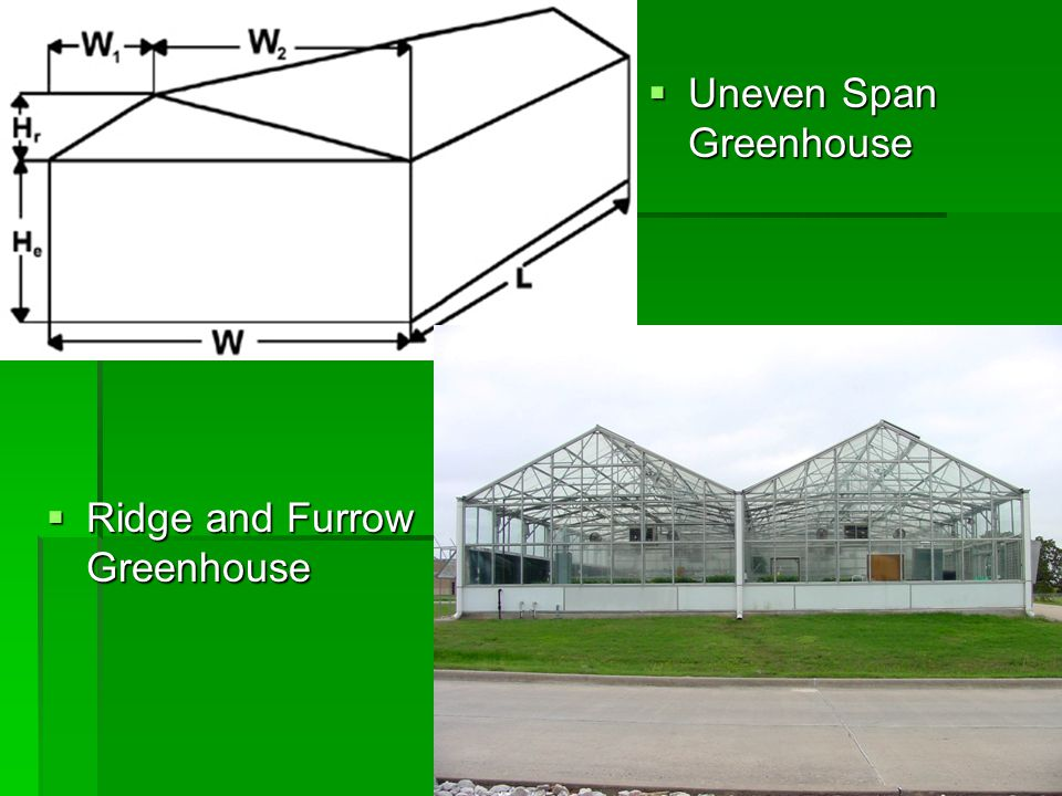  Uneven Span Greenhouse  Ridge and Furrow Greenhouse