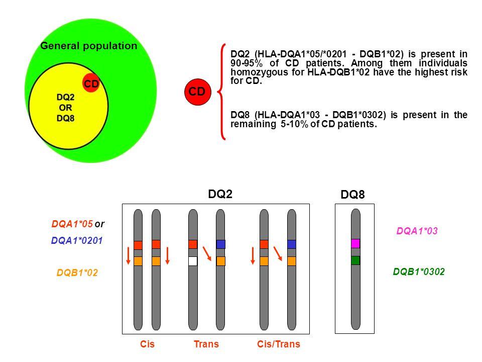 CELIAC DISEASE RISK Classical and frequent CD- associated haplotypes DQ2 and DQ8 (A1*05 - B1*02 / A1*03 - B1*0302) 1:7 Homozygous DQ2 (A1*05 - B1*02/*02) 1:10 DQ8 and DQ2  -chain (A1*03 - B1*0302/*02) 1:24 Other and less frequent CD- associated haplotypes Homozygous DQ2  -chain (A1*0201- B1*02/*02) 1:26 Heterozygous DQ2 (A1*05 - B1*02/X) 1:35 DQ8 (A1*03 - B1*0302/X) 1:89 Heterozygous DQ2  -chain ( B1*02/X) 1:210 Megiorni et al.