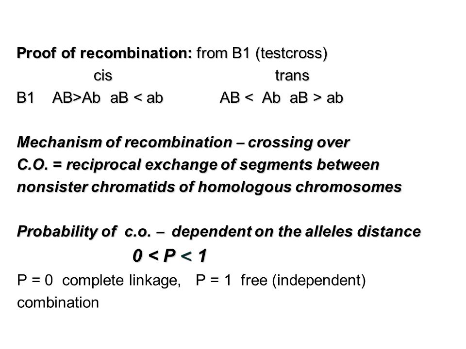 Proof of recombination: from B1 (testcross) cis trans cis trans B1 AB>Ab aB ab Mechanism of recombination – crossing over C.O.