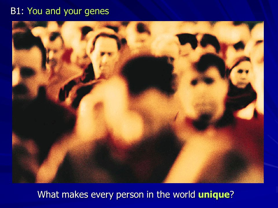 B1: You and your genes What makes every person in the world unique