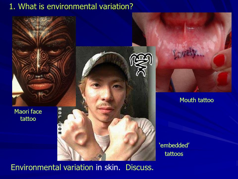 1. What is environmental variation. Environmental variation in skin.