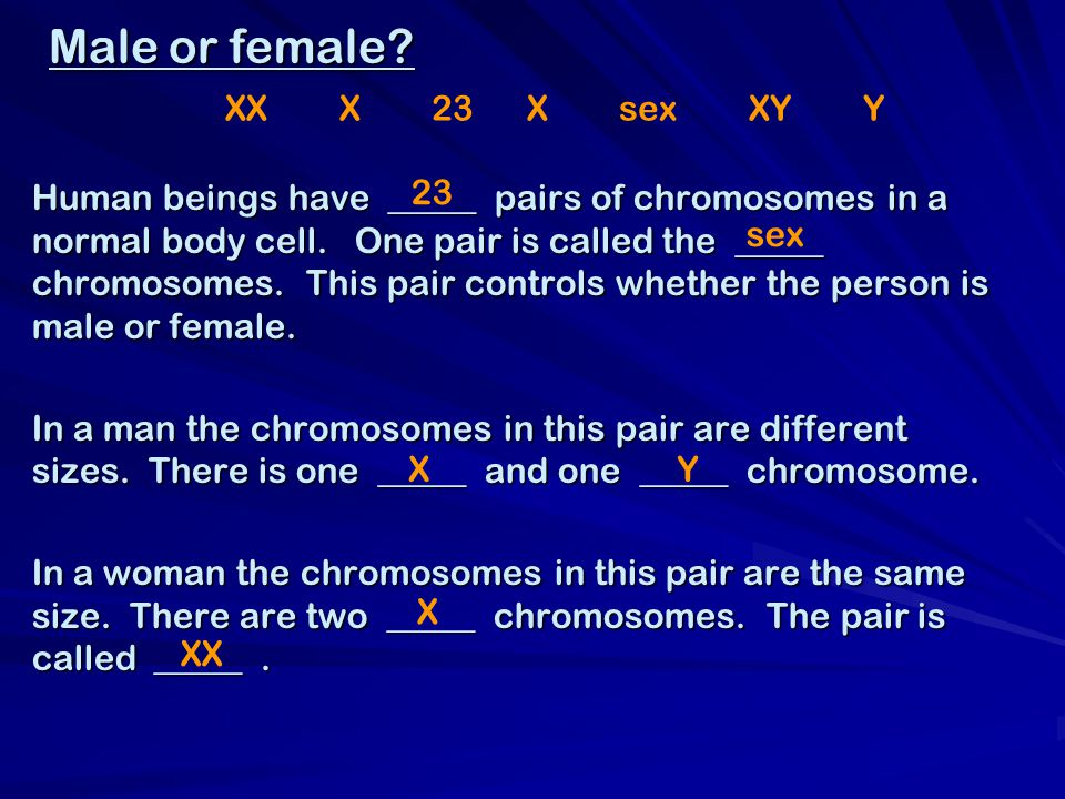 Male or female. Human beings have _____ pairs of chromosomes in a normal body cell.