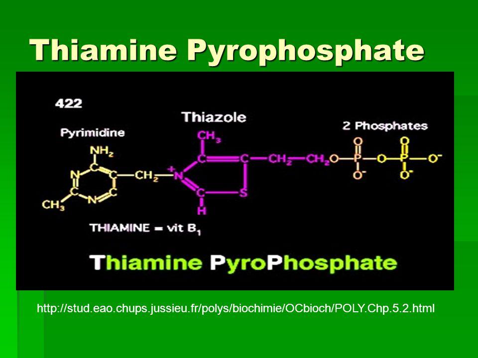 Thiamine Pyrophosphate http://stud.eao.chups.jussieu.fr/polys/biochimie/OCbioch/POLY.Chp.5.2.html