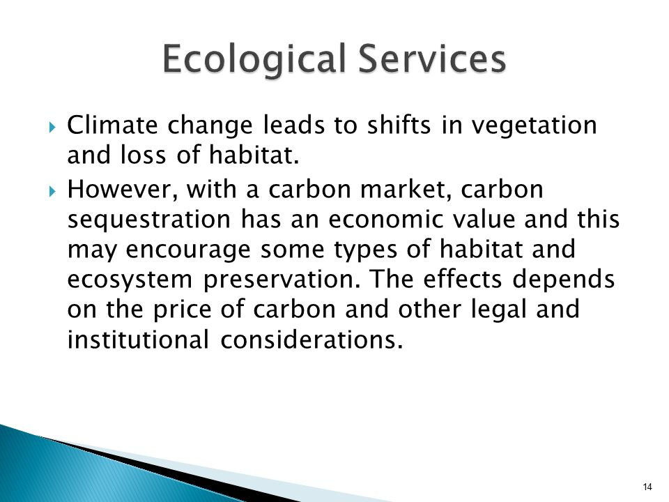  Climate change leads to shifts in vegetation and loss of habitat.  However, with a carbon market, carbon sequestration has an economic value and th