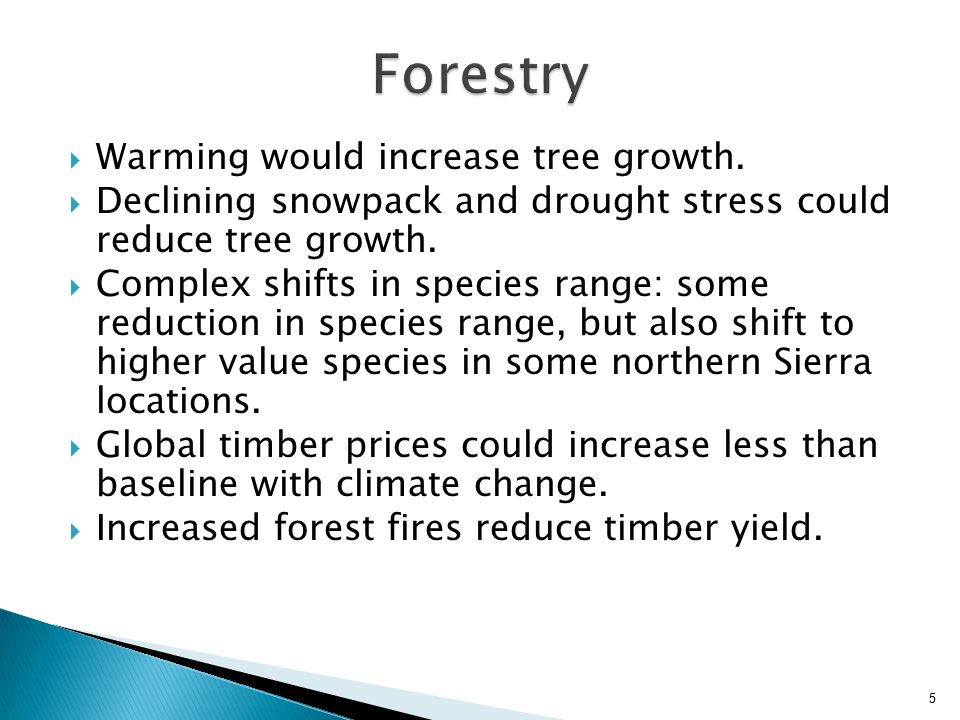  Warming would increase tree growth.  Declining snowpack and drought stress could reduce tree growth.  Complex shifts in species range: some reduct