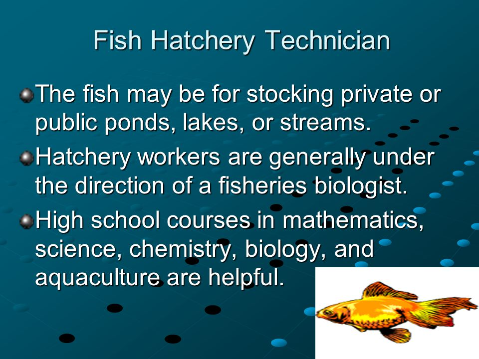 Fish Hatchery Technician The fish may be for stocking private or public ponds, lakes, or streams. Hatchery workers are generally under the direction o