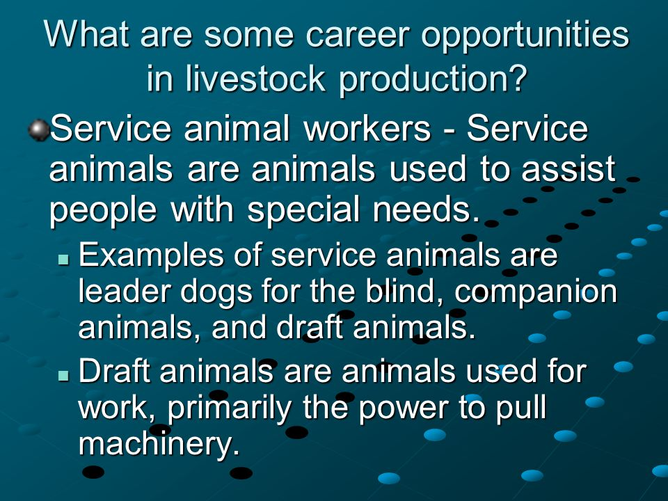 What are some career opportunities in livestock production? Service animal workers - Service animals are animals used to assist people with special ne