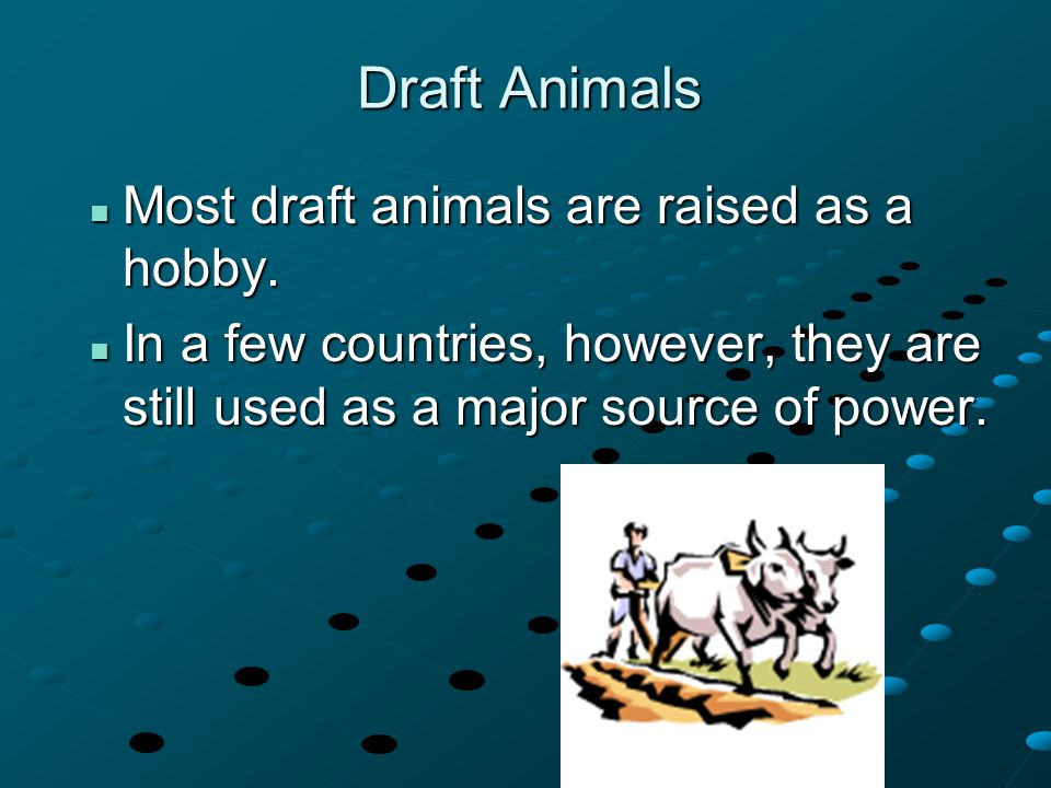 Draft Animals Most draft animals are raised as a hobby. Most draft animals are raised as a hobby. In a few countries, however, they are still used as