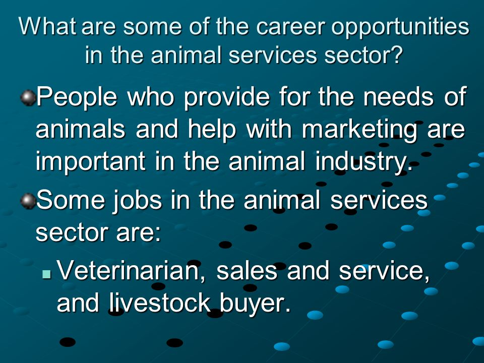 What are some of the career opportunities in the animal services sector? People who provide for the needs of animals and help with marketing are impor