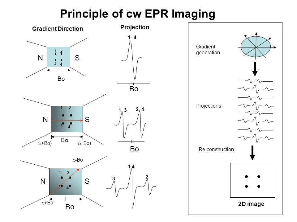 Principle of cw EPR Imaging Bo 1 2 3 4 1- 4 Bo 1, 3 2, 4 3 1,4 2 2D image Re-construction Projections Gradient generation Gradient Direction Projectio