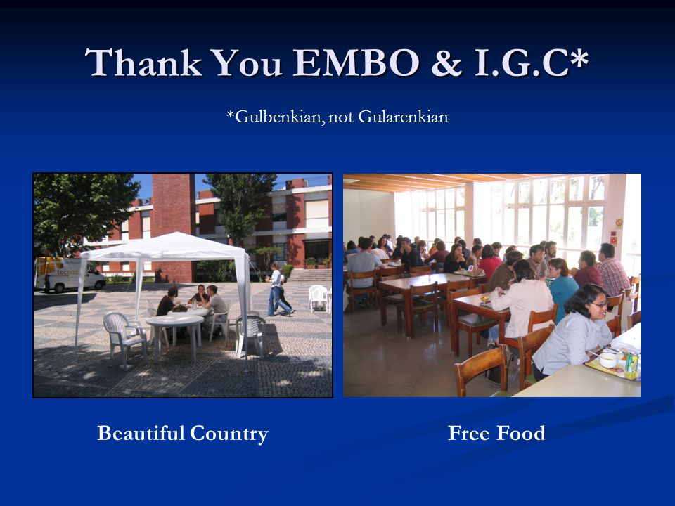 Thank You EMBO & I.G.C* Beautiful Country Free Food *Gulbenkian, not Gularenkian