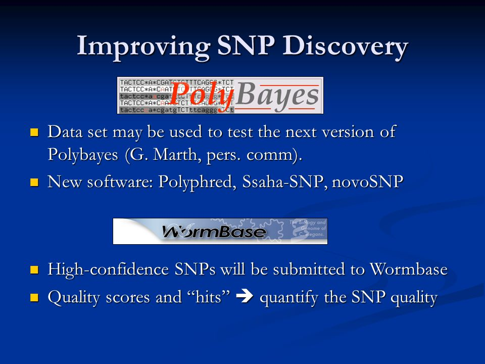 Improving SNP Discovery Data set may be used to test the next version of Polybayes (G.