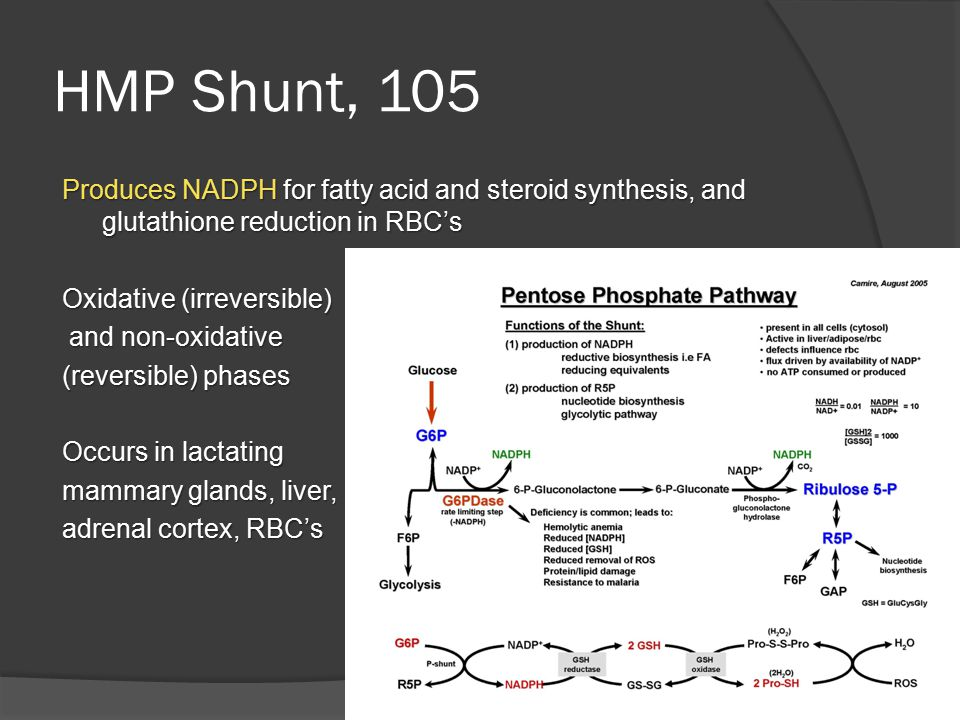 HMP Shunt, 105 Produces NADPH for fatty acid and steroid synthesis, and glutathione reduction in RBC's Oxidative (irreversible) and non-oxidative and non-oxidative (reversible) phases Occurs in lactating mammary glands, liver, adrenal cortex, RBC's