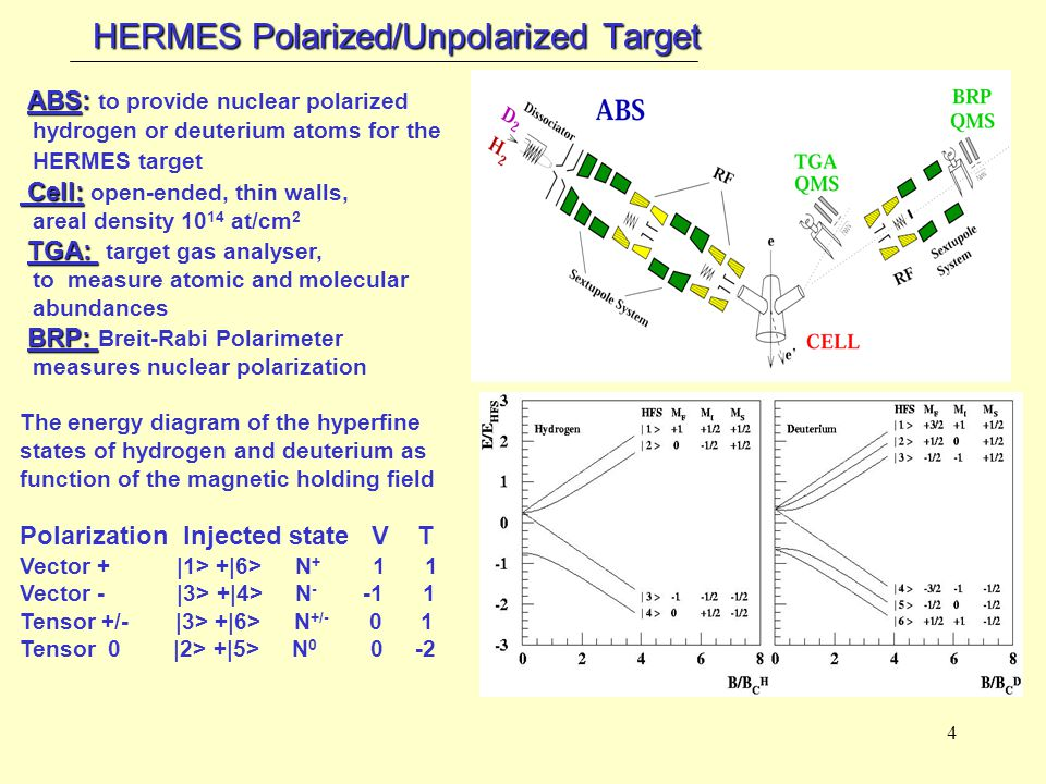 4 HERMES Polarized/Unpolarized Target ABS: ABS: to provide nuclear polarized hydrogen or deuterium atoms for the HERMES target Cell: Cell: open-ended, thin walls, areal density 10 14 at/cm 2 TGA: TGA: target gas analyser, to measure atomic and molecular abundances BRP: BRP: Breit-Rabi Polarimeter measures nuclear polarization The energy diagram of the hyperfine states of hydrogen and deuterium as function of the magnetic holding field Polarization Injected state V T Vector + |1> +|6> N + 1 1 Vector - |3> +|4> N - -1 1 Tensor +/- |3> +|6> N +/- 0 1 Tensor 0 |2> +|5> N 0 0 -2
