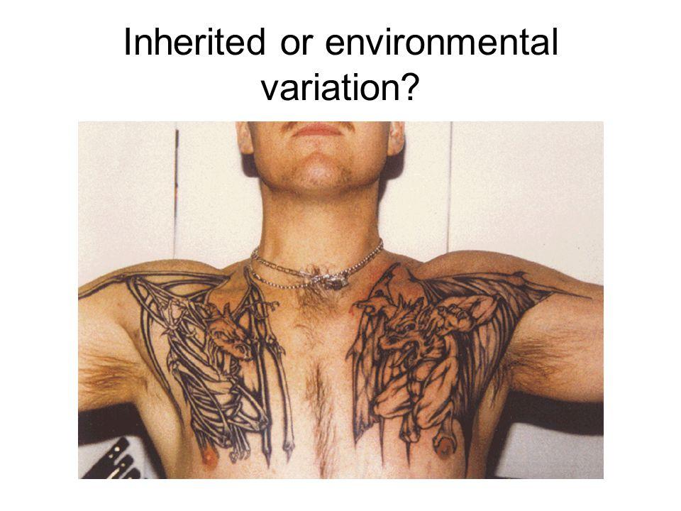 Inherited or environmental variation