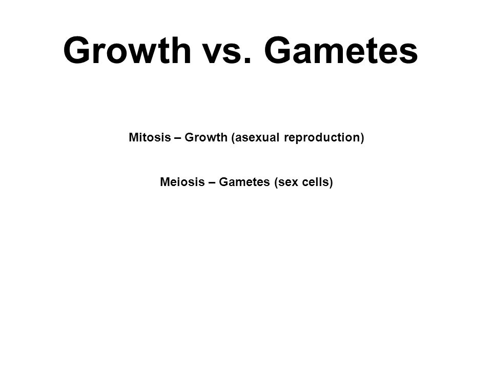 Growth vs. Gametes Mitosis – Growth (asexual reproduction) Meiosis – Gametes (sex cells)