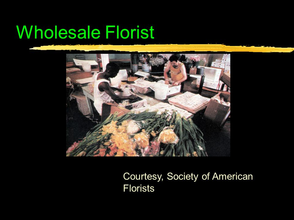 Wholesale Florist Courtesy, Society of American Florists