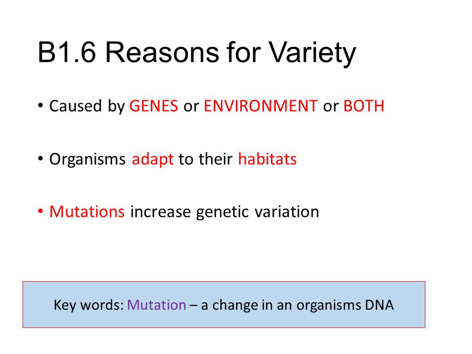 B1.6 Reasons for Variety Caused by GENES or ENVIRONMENT or BOTH Organisms adapt to their habitats Mutations increase genetic variation Key words: Muta