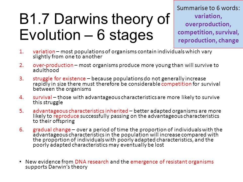 B1.7 Darwins theory of Evolution – 6 stages 1.variation – most populations of organisms contain individuals which vary slightly from one to another 2.
