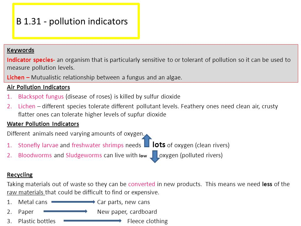 B 1.31 - pollution indicators Keywords Indicator species- an organism that is particularly sensitive to or tolerant of pollution so it can be used to