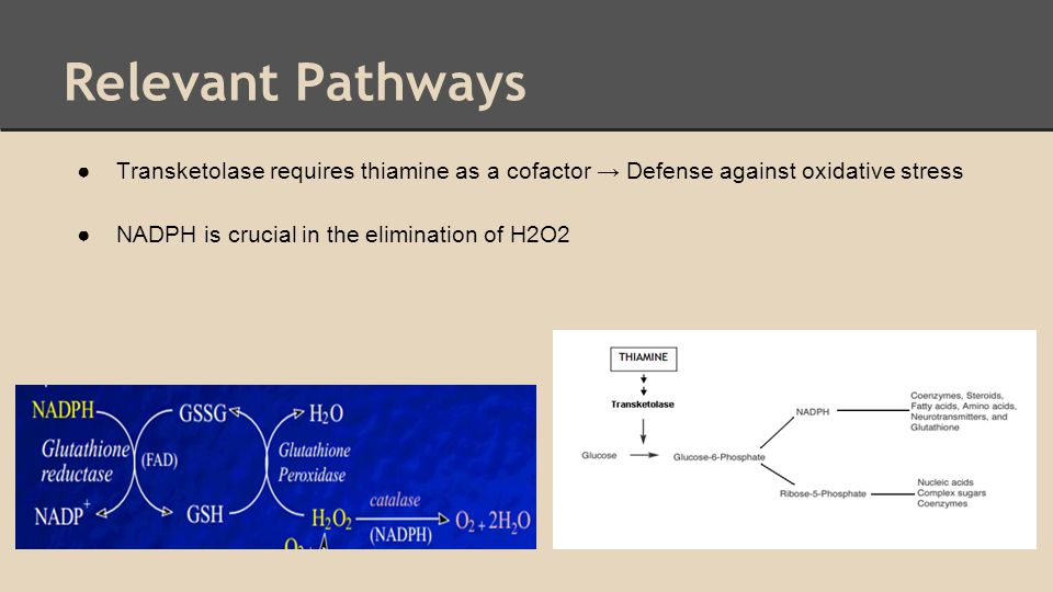 Relevant Pathways ●Transketolase requires thiamine as a cofactor → Defense against oxidative stress ●NADPH is crucial in the elimination of H2O2