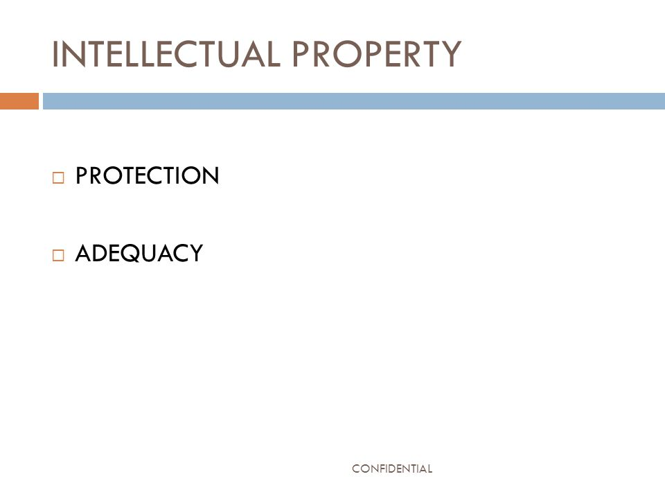 INTELLECTUAL PROPERTY  PROTECTION  ADEQUACY CONFIDENTIAL