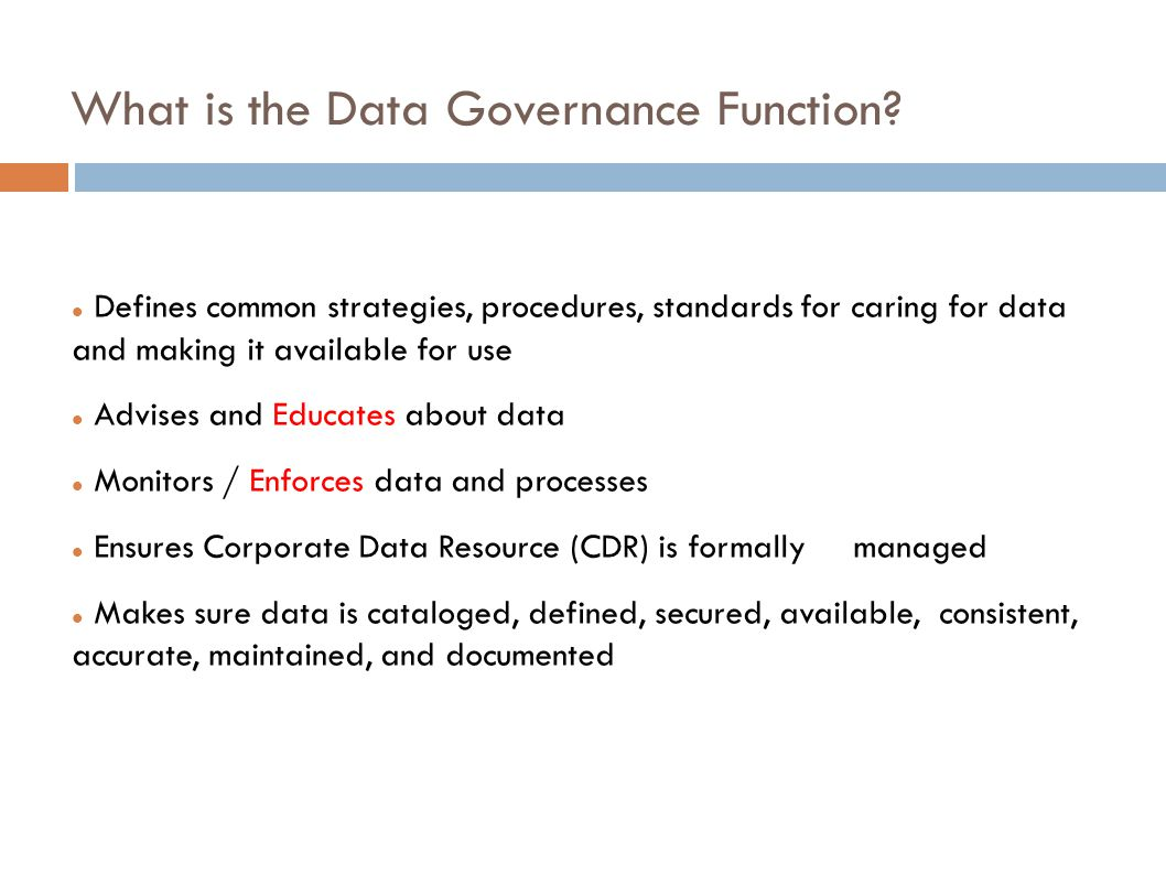 What is the Data Governance Function.