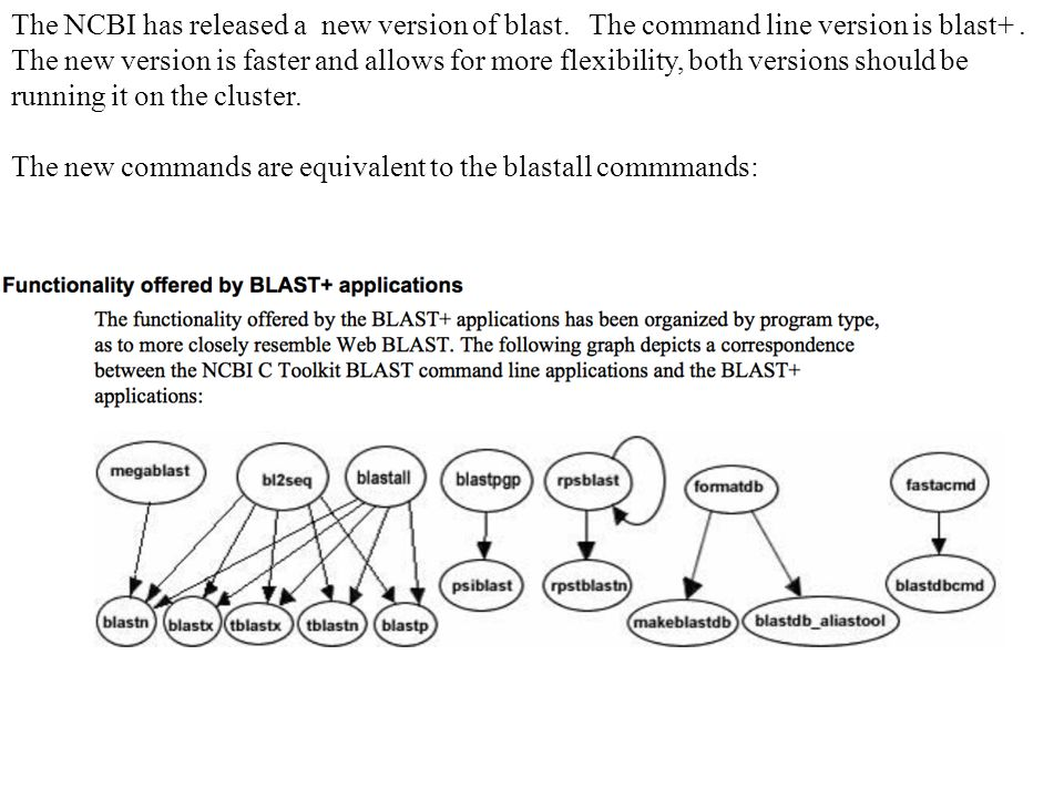 The NCBI has released a new version of blast. The command line version is blast+.
