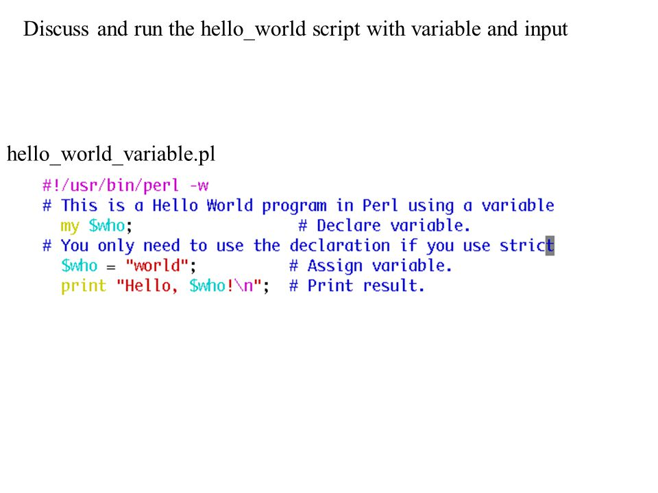 Discuss and run the hello_world script with variable and input hello_world_variable.pl