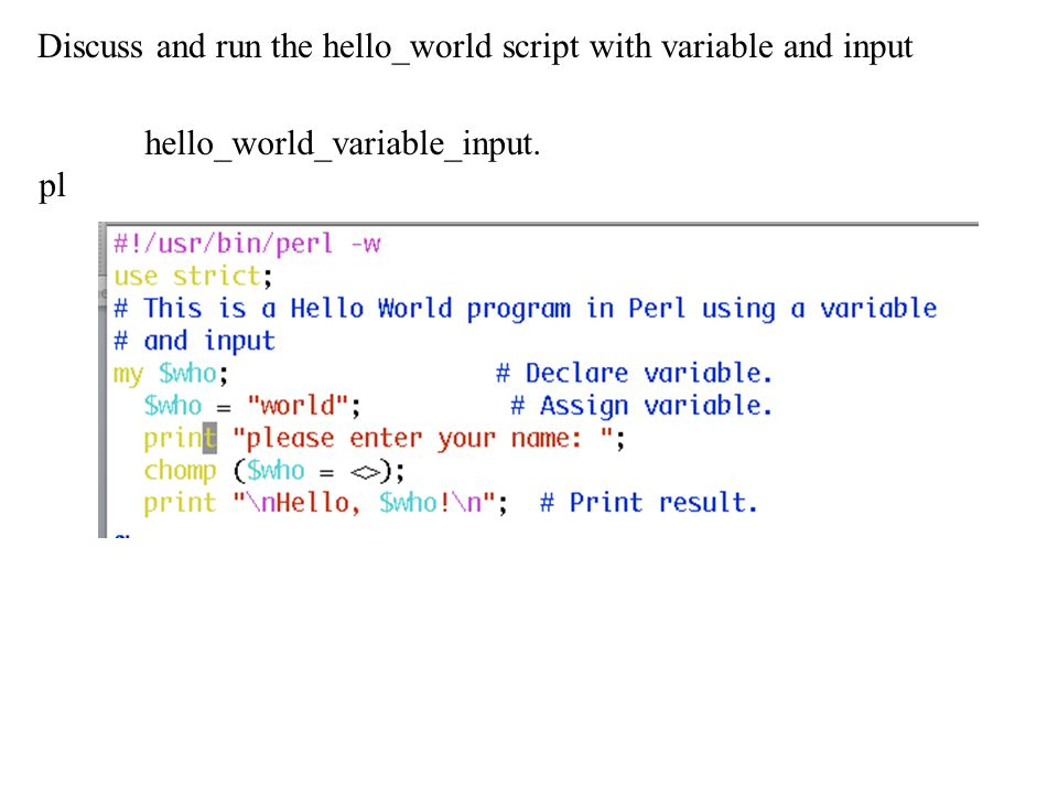 Discuss and run the hello_world script with variable and input hello_world_variable_input. pl