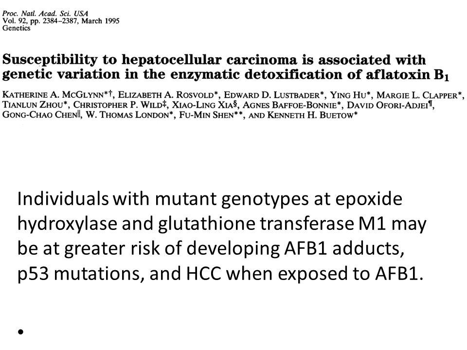 Individuals with mutant genotypes at epoxide hydroxylase and glutathione transferase M1 may be at greater risk of developing AFB1 adducts, p53 mutations, and HCC when exposed to AFB1.
