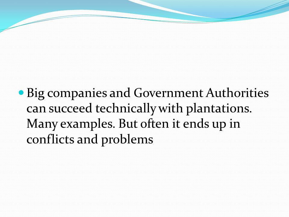 Big companies and Government Authorities can succeed technically with plantations.