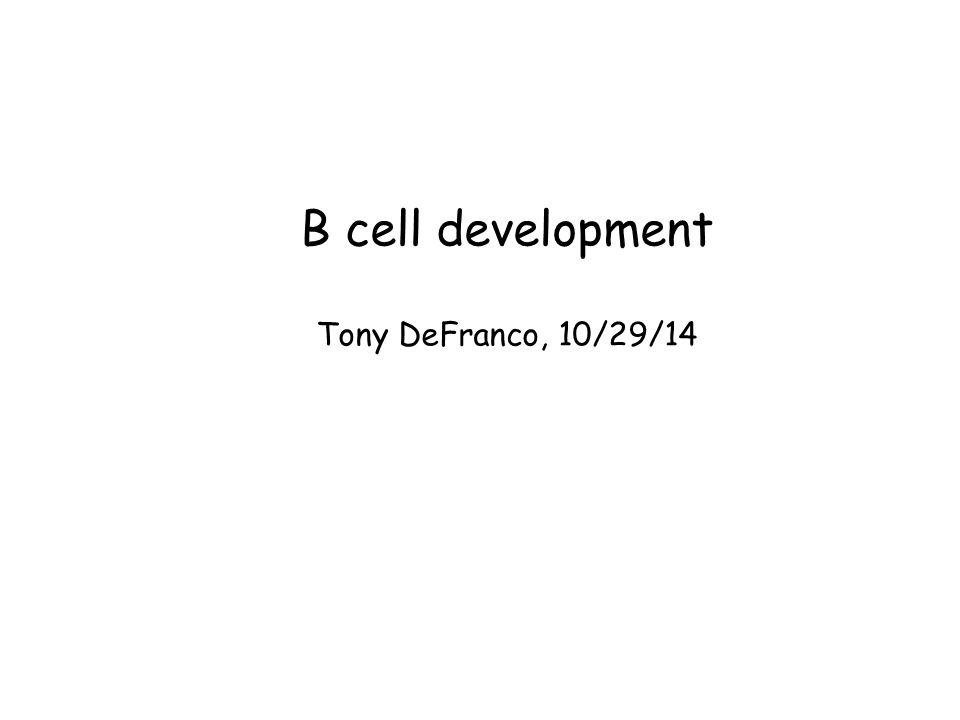 B cell development Tony DeFranco, 10/29/14
