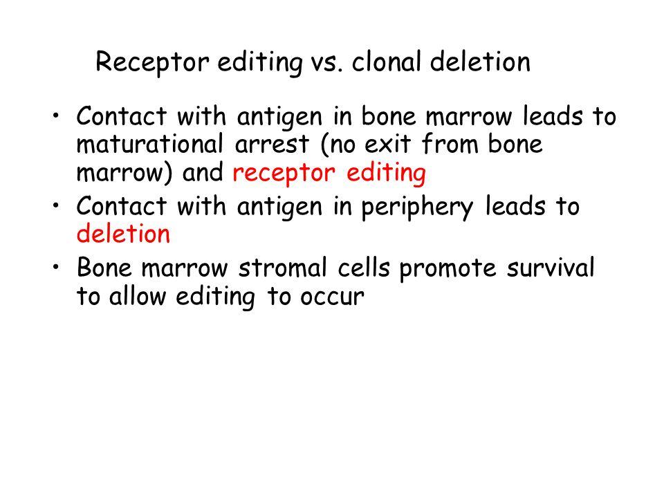 Receptor editing vs.