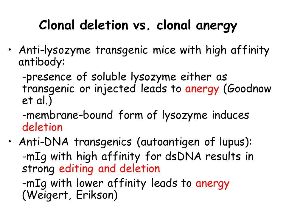 Clonal deletion vs.