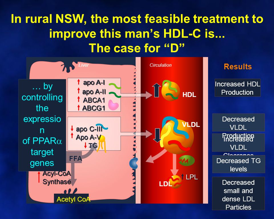 """In rural NSW, the most feasible treatment to improve this man's HDL-C is... The case for """"D""""Acyl-CoASynthase Acetyl CoA FFA apo A-I apo A-II ABCA1 apo"""