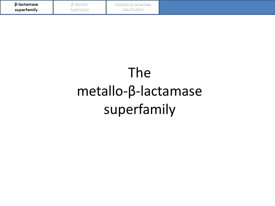 β-lactamase superfamily The metallo-β-lactamase superfamily β-lactam hydrolysis Metallo-β-lactamase classification