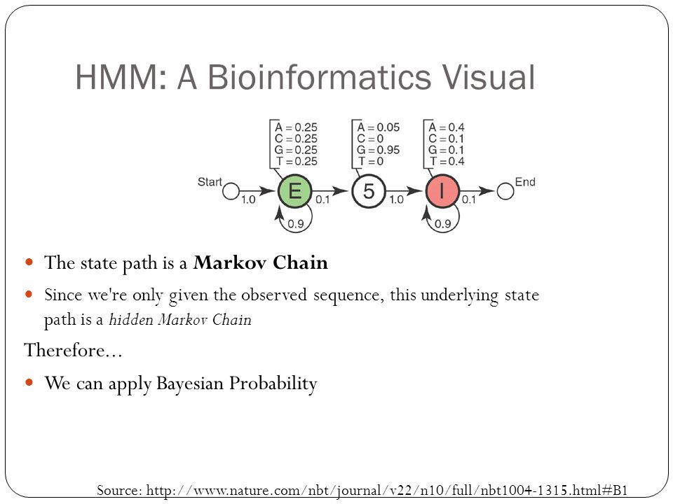 HMM: A Bioinformatics Visual The state path is a Markov Chain Since we're only given the observed sequence, this underlying state path is a hidden Mar