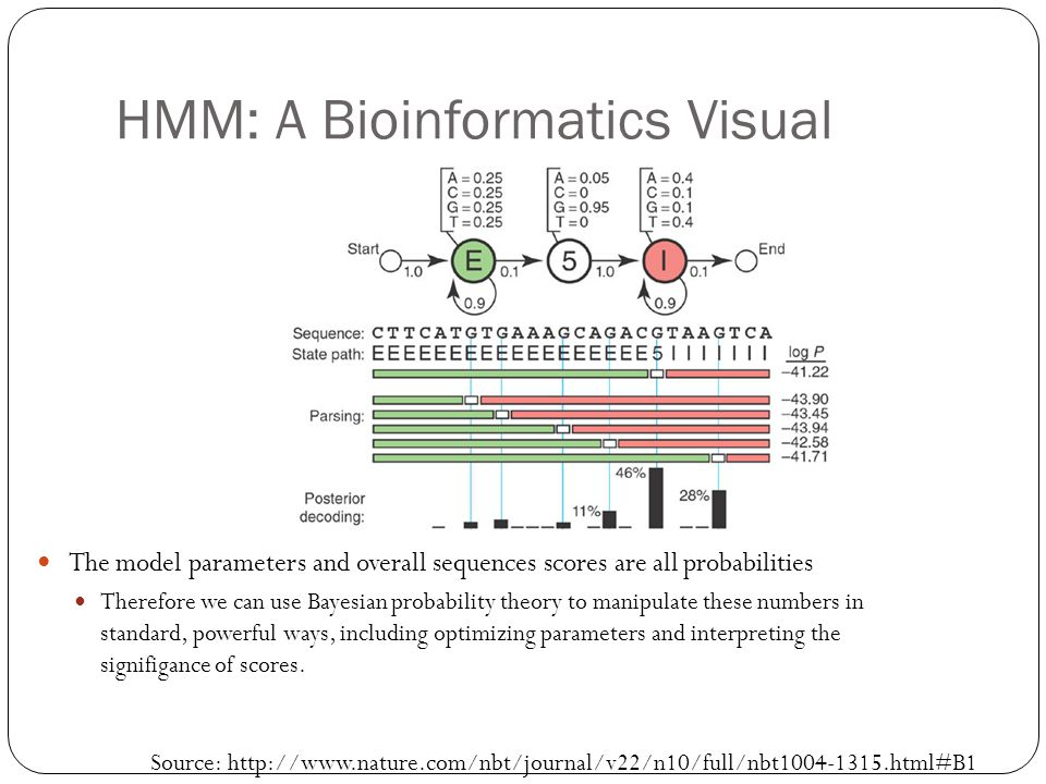 HMM: A Bioinformatics Visual The model parameters and overall sequences scores are all probabilities Therefore we can use Bayesian probability theory to manipulate these numbers in standard, powerful ways, including optimizing parameters and interpreting the signifigance of scores.