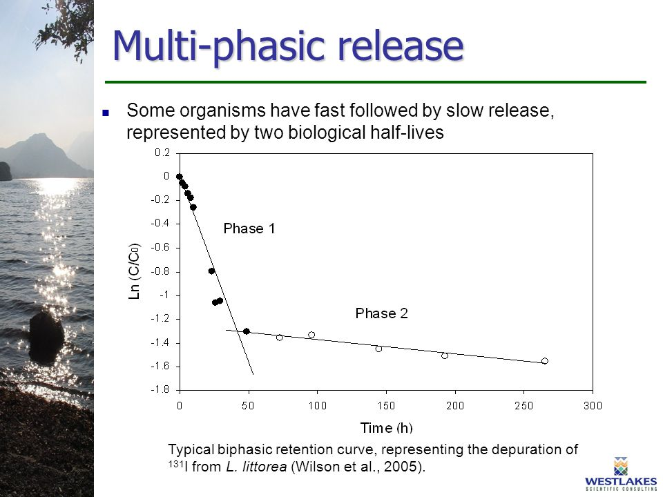 Multi-phasic release Some organisms have fast followed by slow release, represented by two biological half-lives Typical biphasic retention curve, representing the depuration of 131 I from L.