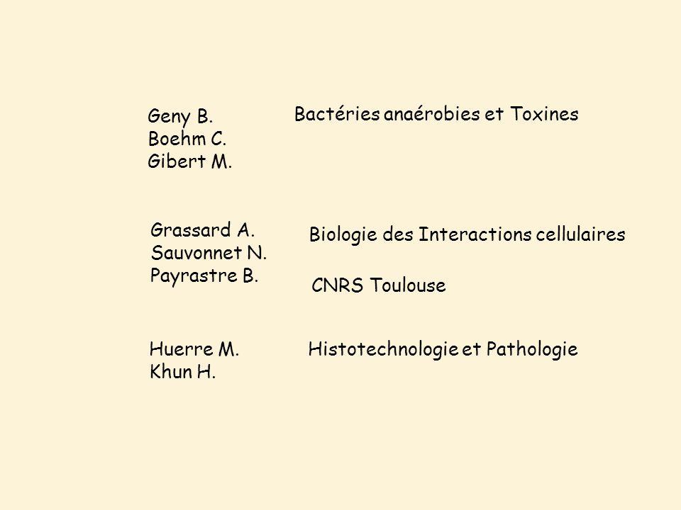Geny B. Boehm C. Gibert M. Grassard A. Sauvonnet N.