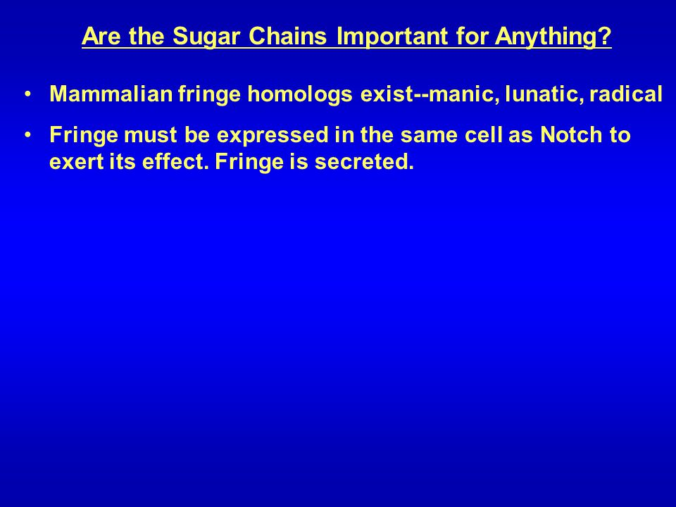 Are the Sugar Chains Important for Anything? Mammalian fringe homologs exist--manic, lunatic, radical Fringe must be expressed in the same cell as Not